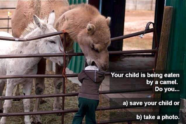 Save your child or take photo :P :D
