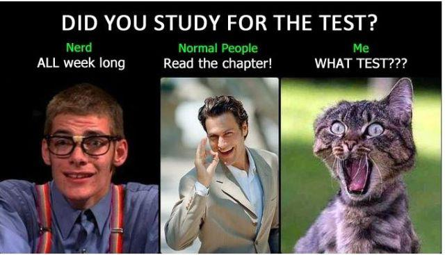 Study for d test